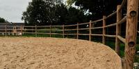Paard laten africhten limburg.JPG